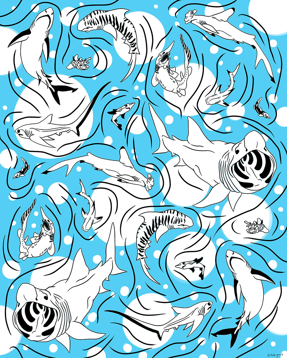 Sharks, by Cactus Springman. A digital illustration of various species of sharks all swimming around each other. The sharks and water ripples are black, while the background water and bubbles are blue and white. The sharks are repeated as an asymmetrical pattern throughout the piece.