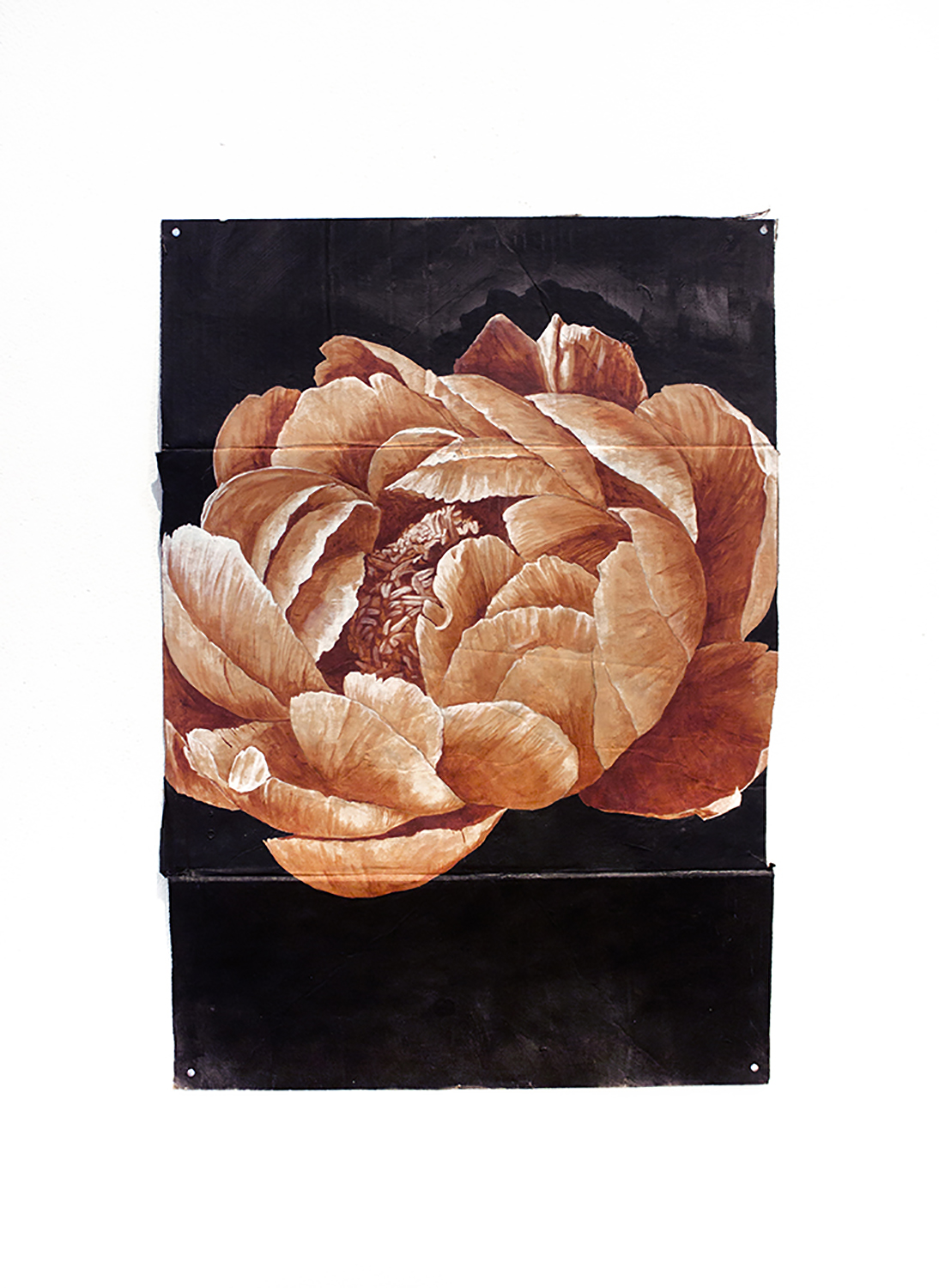 Peony painted on cardboard