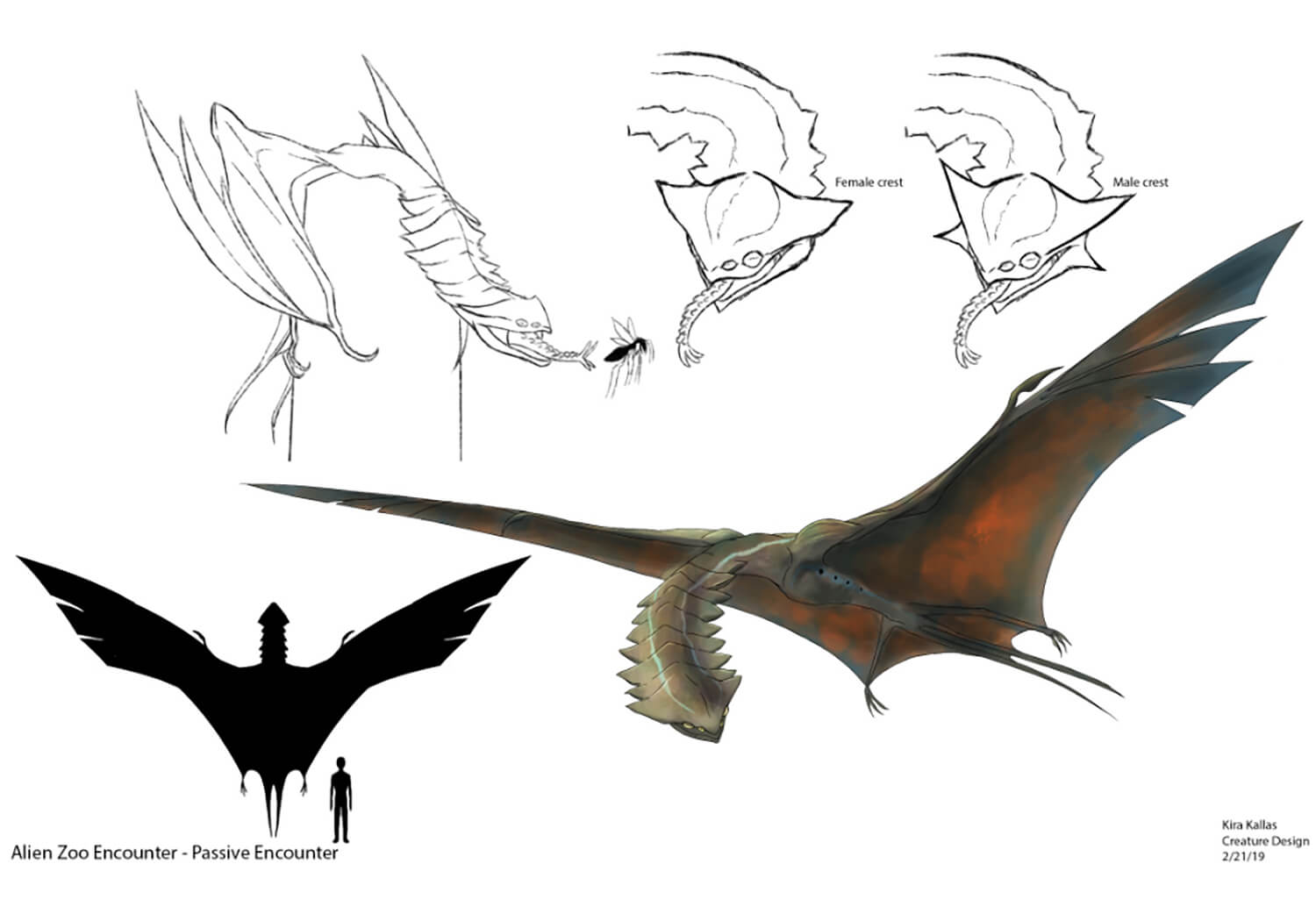 Flying Creature Concept