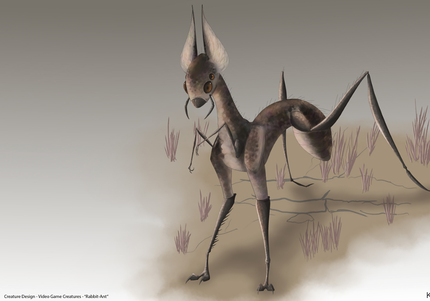 Rabbit Ant Concept
