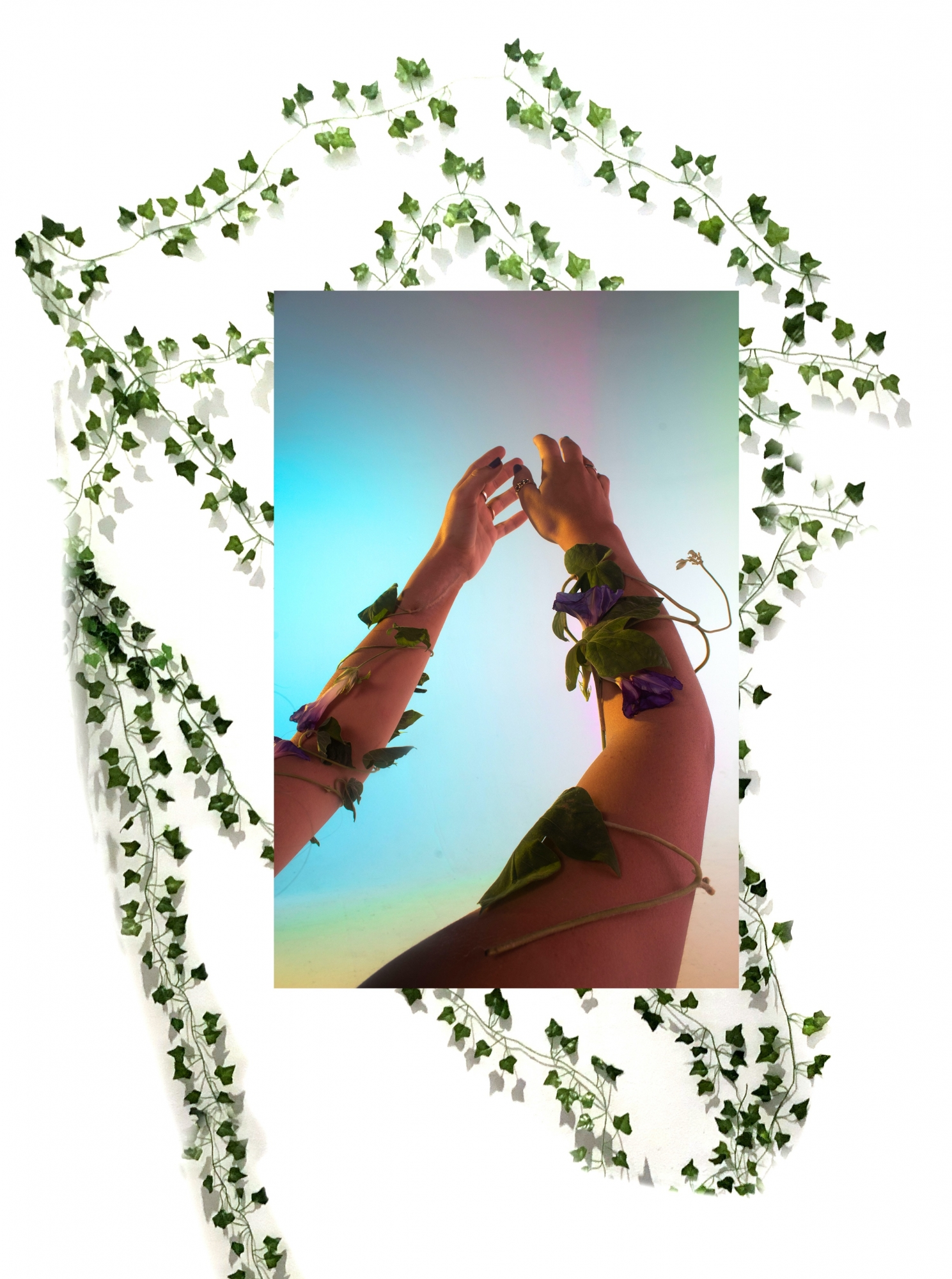 Digital composite image of two arms with ivy twisted around them and ivy vines in background.