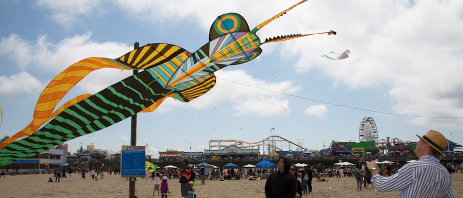 A bug-shaped kite flies high at the 2017 Kite Festival