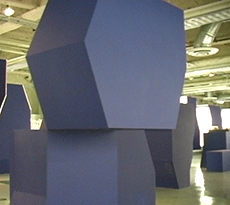 ALI Class of 2007 Installation