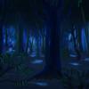 NightForest01