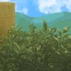 Peekingplants